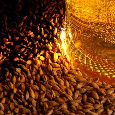 malt_2_toper_kahve_coffee_roaster_machines_plantde_kaffeerostmaschinen_maquinas_asar_cafe__629a4.jpg.480p